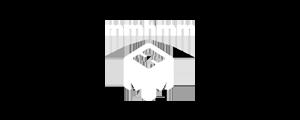 Logo Lyft